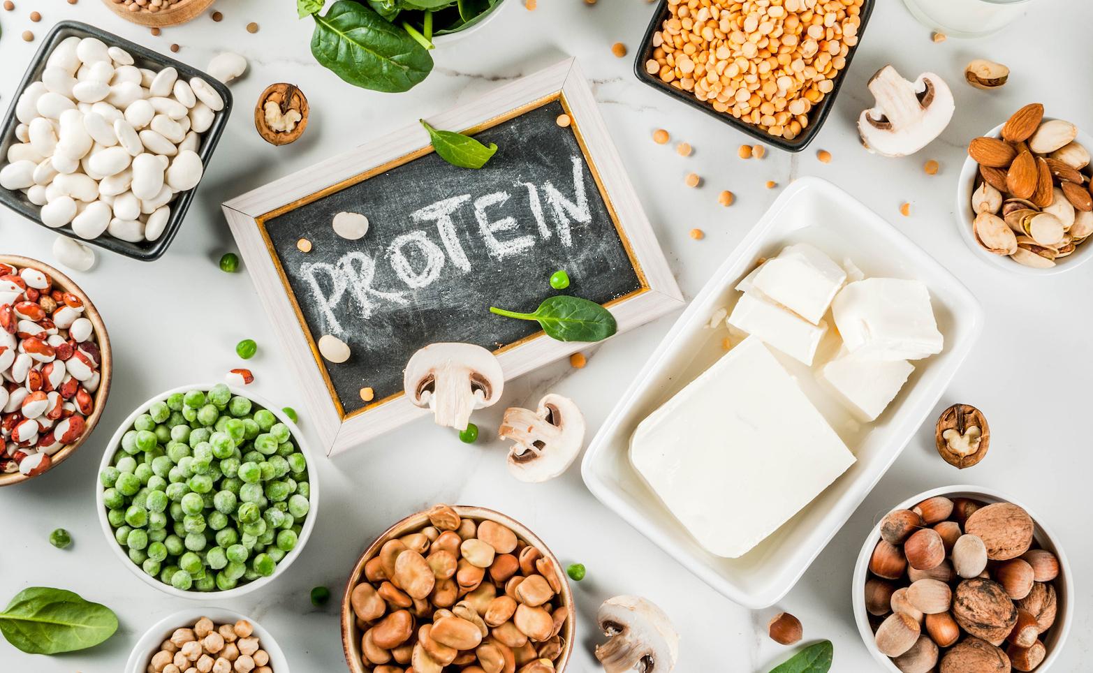 guida-completa-alle-proteine