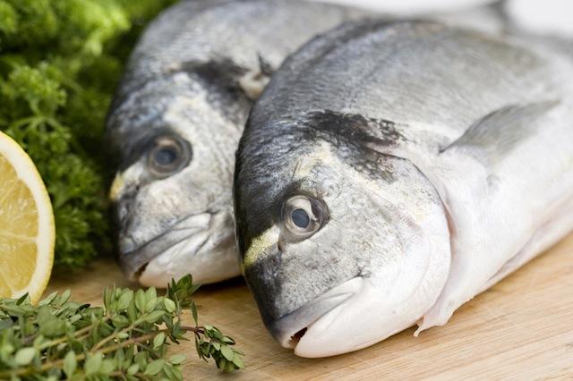 omega-3-rallentano-l-invecchiamento-biologico