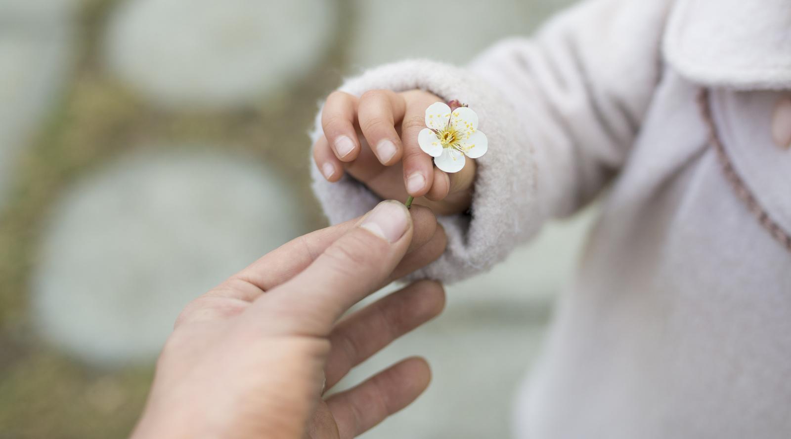 perche-la-gratitudine-importante-e-ti-cambia-la-vita